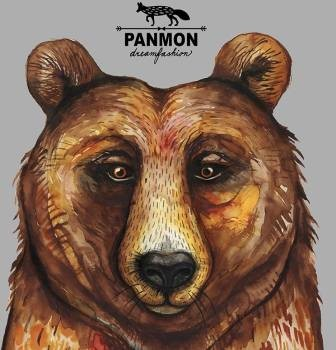 Panmon - My Dream is Your Dream
